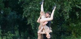 Viola tańczy z radości, Karolak zawyje z rozpaczy