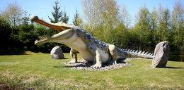 Taaakie dinozaury tylko w Łebie!