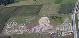 Ogród Jana Pawła II. Niesamowite zdjęcia
