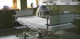Groza w Tucholi. 17-latka zaatakowana przez hordę wściekłych psów
