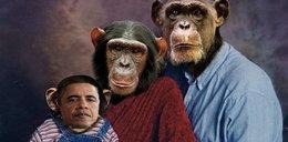 Skandal! Zrobili z Obamy małpę