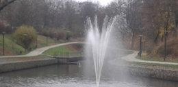 Gdańsk ma nową fontannę