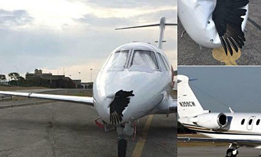 Pilot pasażerskiego samolotu Cessna 650