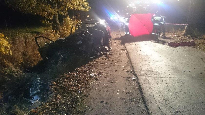 Olsztyn: Samochód uderzył w drzewo. Kierowca zginął. Wstrząsające zdjęcia
