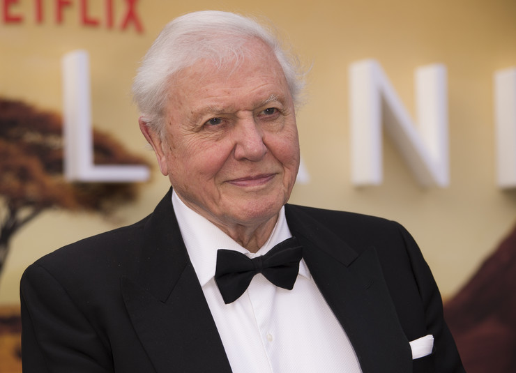 David Attenborough foto ap joel c ryan