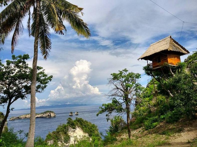 treehouse indonesia2