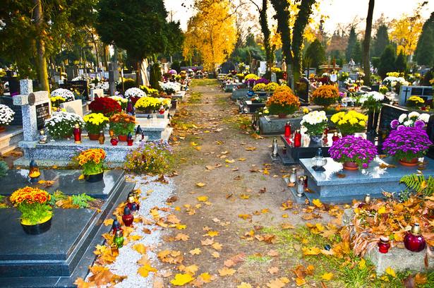 Administrację cmentarzy sprawują gminy lub parafie.
