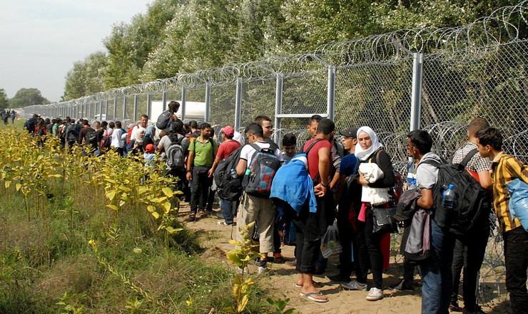 Migranti na mađarskoj granici
