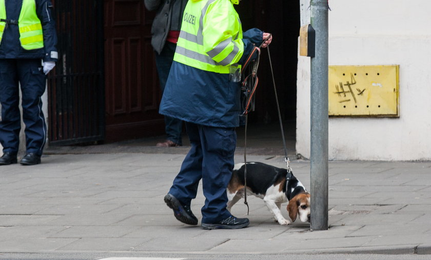 Wyniki pracy niemieckich psów przekazane prokuraturze