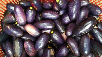 Health benefits of Ube (African or bush pear)