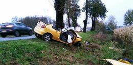 Tragedia pod Trzebiechowem. Kierowca nie miał prawa jazdy