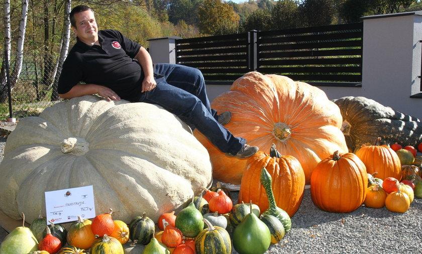 Pan Mateusz wyhodował dynie giganty i ustanowił tegoroczny rekord Polski. Dynia Anastazja waży 746,5 kg, a dynia Maja 679 kg