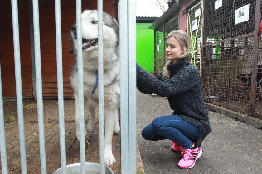 Joanna Krupa w schronisku dla zwierząt