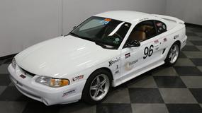 Forda Mustanga SVT Cobra - jeden z nielicznych na sprzedaż