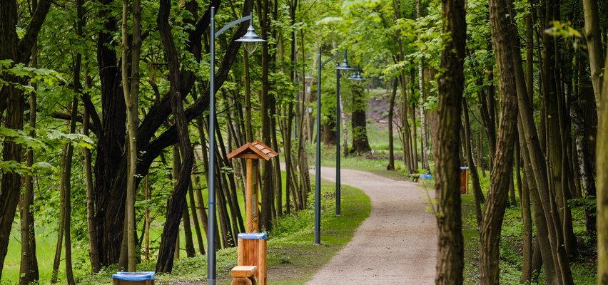 Ten park zachęca do spacerów. Przeszedł metamorfozę