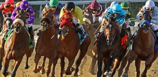Sejm zmienił ustawę o wyścigach konnych: W Radzie PKWK będzie 9 osób