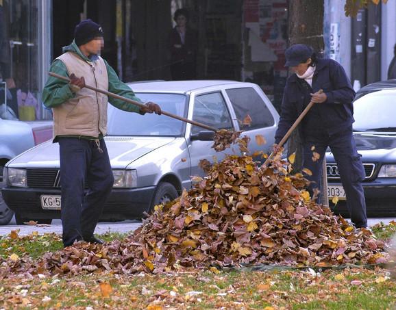 Pojedinci uveliko skupljaju lišće