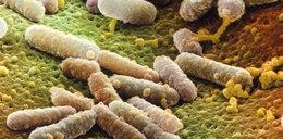 Groźne bakterie w portfelu! Tym możesz zarazić się od pieniędzy
