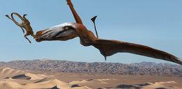 Znaleźli potwora sprzed 210 milionów lat