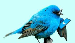 Twitter has released Twitter Blue.