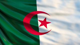 """Negocjował z """"Szakalem"""". Kim jest prezydent Algierii Abd al-Aziz Buteflika?"""