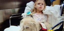 Pies pomagał w operacji małej Polki