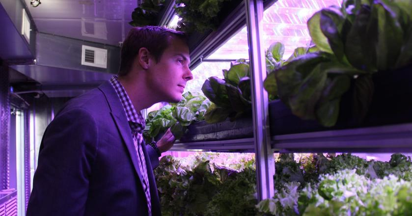 Eric Ellestad, jeden z założycieli Local Roots, w wertykalnej i hydroponicznej farmie jego firmy
