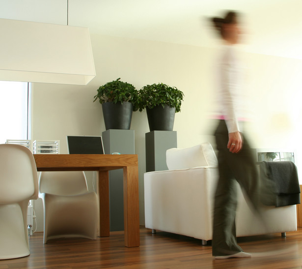 Przestępstwo naruszenia miru domowego może popełnić również właściciel, który wchodzi do swojego mieszkania wbrew woli lokatorów
