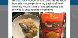 Znalazł to w ryżu z Lidla. Obrzydliwe!