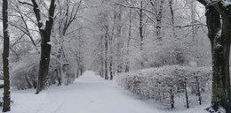 Uwaga! To będzie najzimniejszy weekend tej zimy