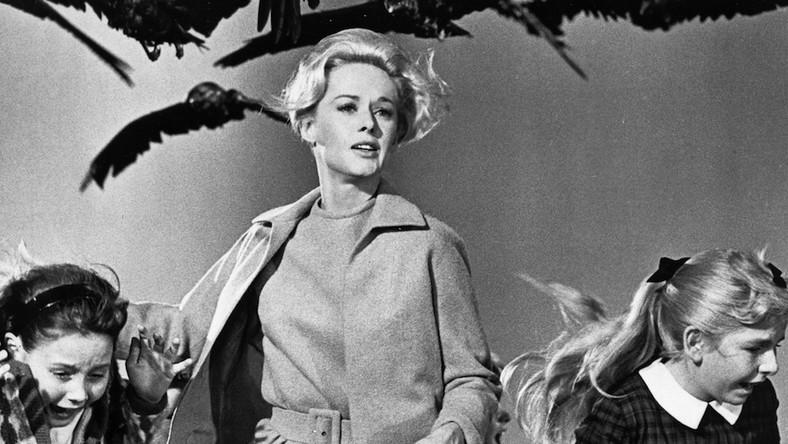 """Po sukcesie filmu """"Psychoza"""" z 1960 roku Hitchcock szukał pomysłu na nowy obraz. Rok później przeczytał w prasie o przypadkach ataków ptaków na ludzi w nadmorskiej miejscowości i przypomniał sobie o noweli """"Ptaki"""" Daphne du Maurier"""