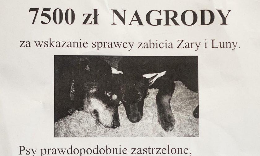 Pomóżcie mi znaleźć zabójcę moich psiaków