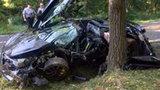 Co za pech! Rozbił na drzewie auto za milion złotych!