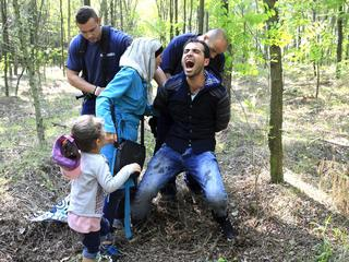 Hungarian policemen detain a Syrian migrant family after they entered Hungary at the border with Ser