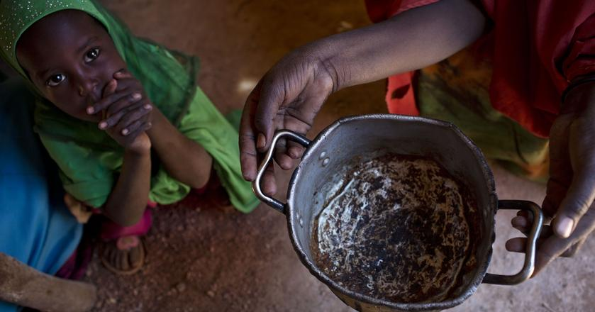 Naukowcy stworzyli żywność z elektryczności i dwutlenku węgla