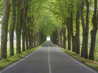 Utrzymanie dróg będzie bez podatkowego ryzyka