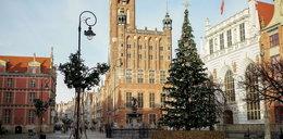 """Gdańsk szykuje się do świąt. Będą iluminacje, choinki i jarmark inny niż wszystkie. """"Zachęcamy do bezpiecznych spacerów"""""""