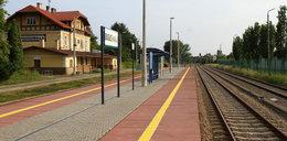 Pociągi wracają na trasę Rzeszów – Jasło