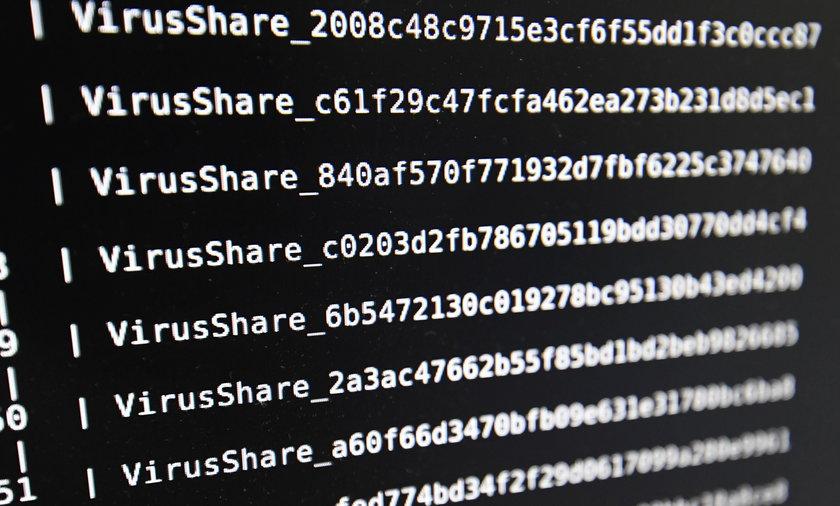 Hakerzy zaatakowali komputery w całej Europie