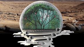 Sekwojowy las - zwycięski projekt marsjańskiego miasta