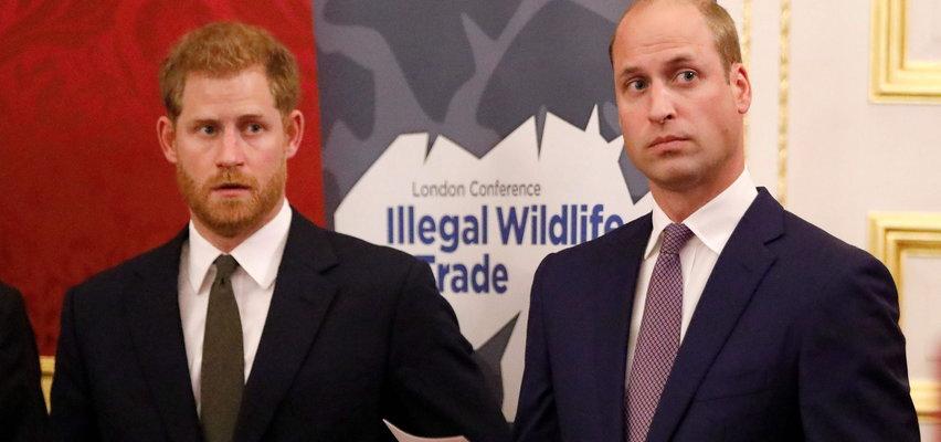 """William chciał powstrzymać brata przed ślubem z Meghan. Mówił o niej pogardliwie """"ta dziewczyna"""""""