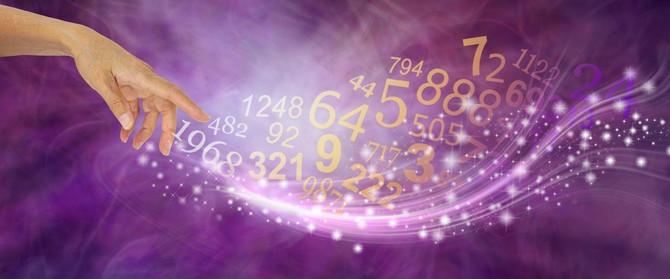 Koji je vaš broj?