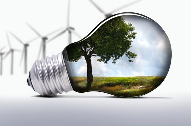 Ekologiczne wynalazki, fot. Gilles Lougassi