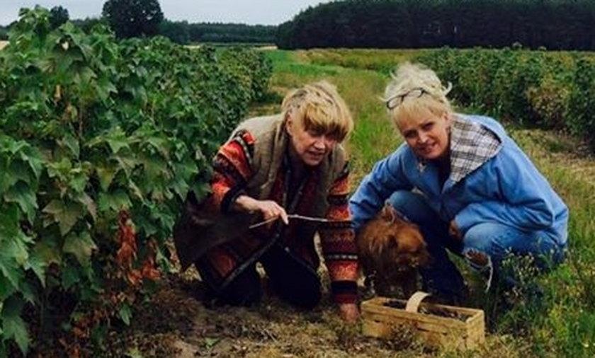 Adrianna Biedrzyńska, Katarzyna sienkiewicz, wieś, wakacje