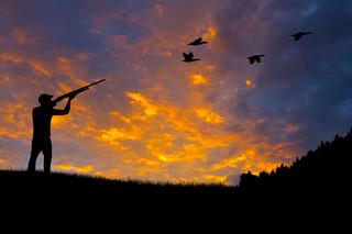 Trudna droga na polowanie: Zobacz, kto może zostać myśliwym