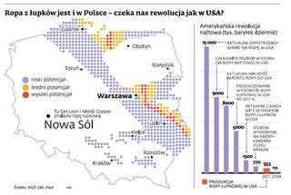 Jakie surowce mineralne ma Polska? (MAPY)