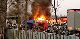 Ogromny pożar na Podhalu. Płonie hala w Szaflarach