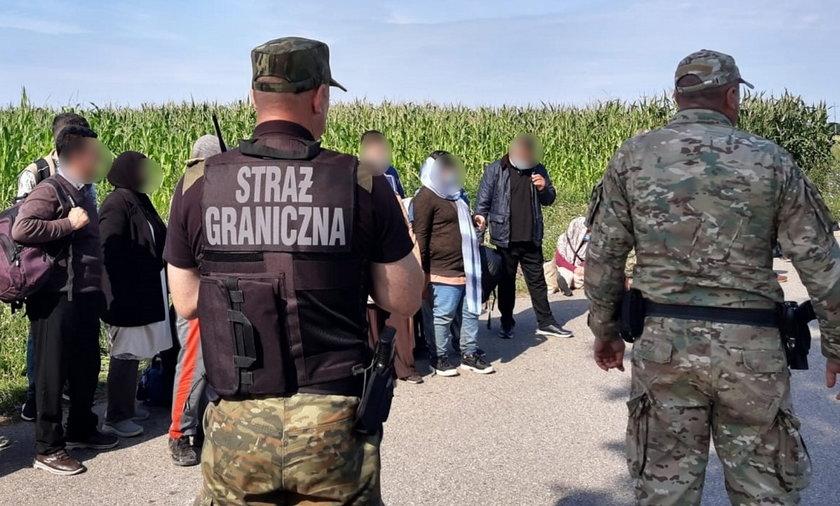 Straż graniczna ma pełne ręce roboty.