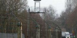 Iwiński: były więzienia CIA w Polsce