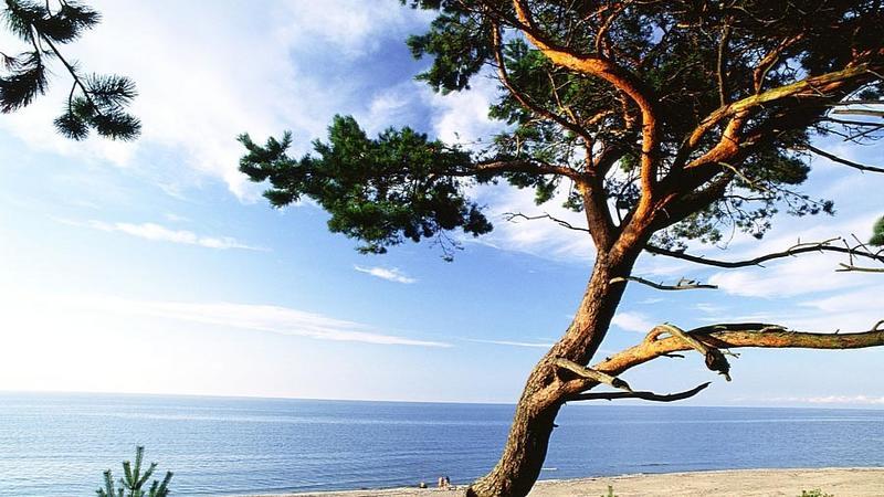 Wakacje nad Bałtykiem: Mierzeja Wiślana